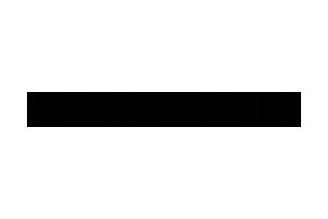 Vilshenko Logo