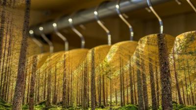 Sustainable and Organic Fabrics